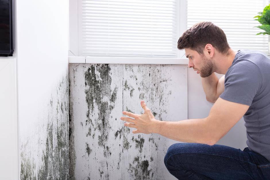 Junger Mann betrachtet entsetzt die großflächige Schimmelbild an einer feuchten Außenwand